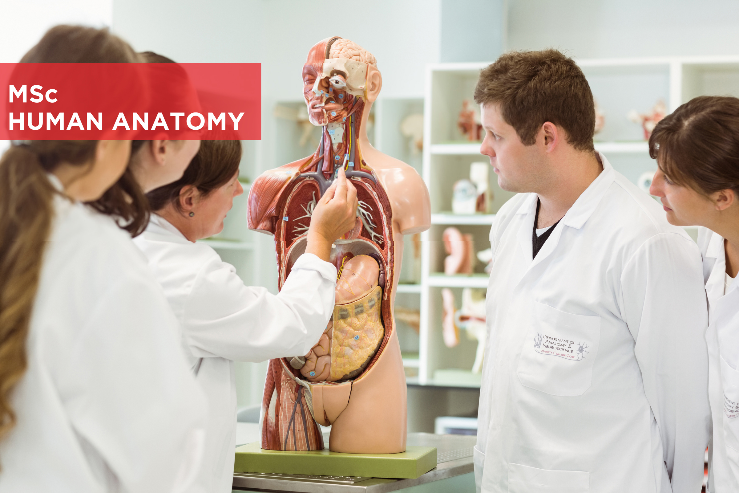 MSc Human Anatomy course 2020 Now accepting applications