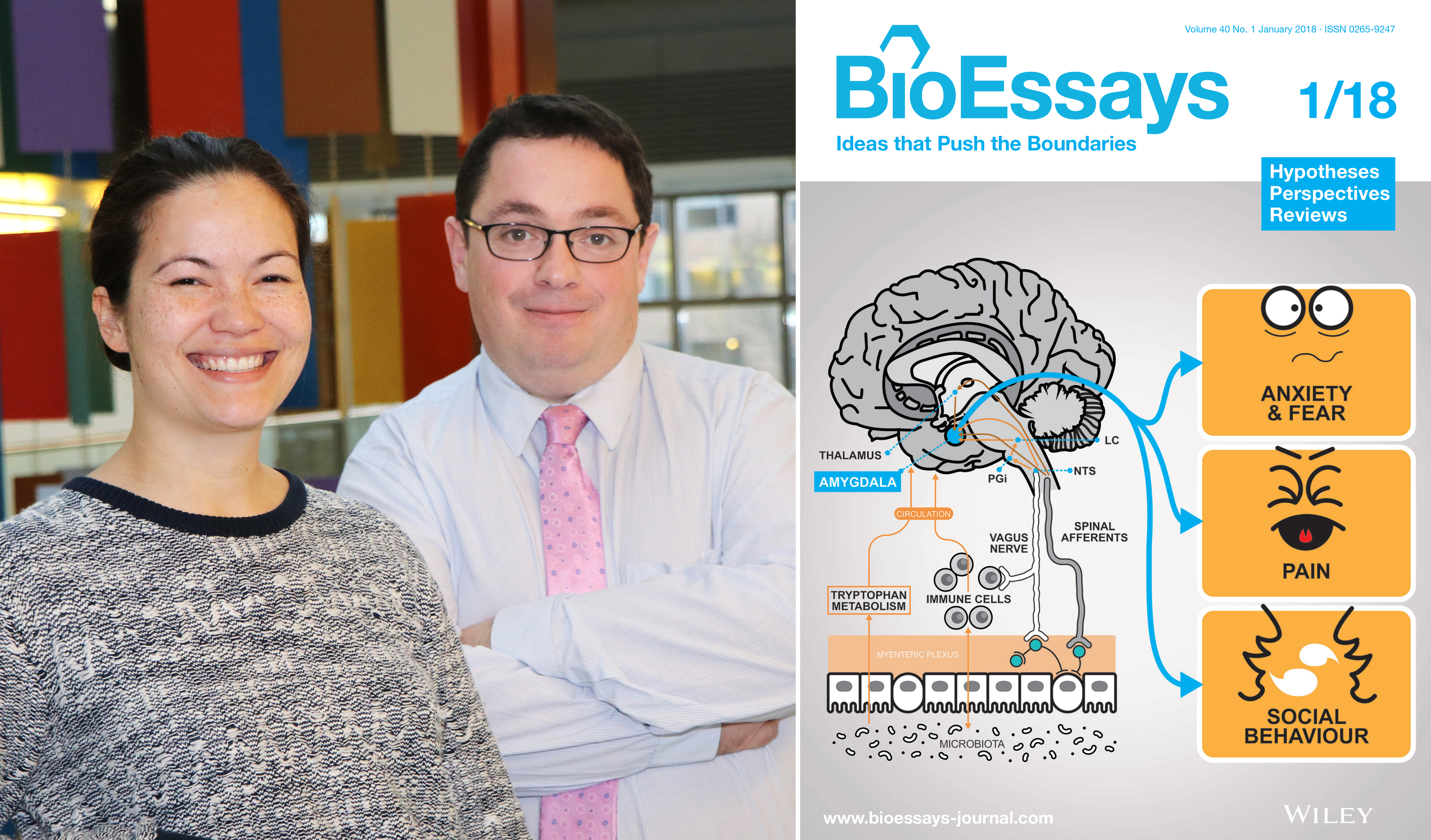 BioEssays cover features Cowan, Cryan article
