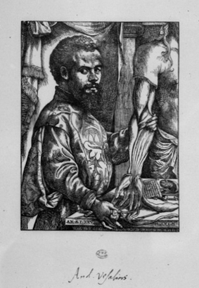 andreas vesalius biography essay Encyclopedia of world biography andreas vesalius was a flemish anatomist in this essay andreas described the veins that draw blood from the side of the torso.