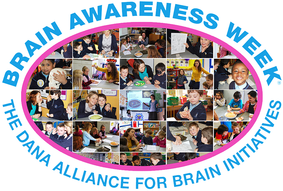 UCC Neuroscientists visit local primary schools for Brain Awareness Week