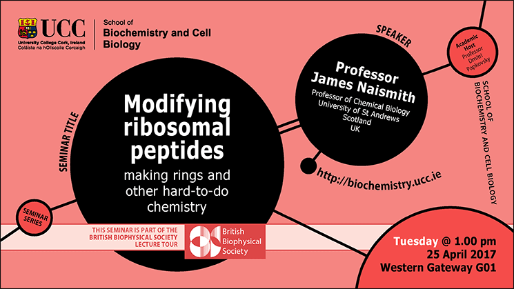 2016-2017 School of Biochemistry and Cell Biology Seminar Series. SEMINAR TITLE: Modifying ribosomal peptides: making rings and other hard-to-do chemistry.SEMINAR SPEAKER: Professor James Naismith, Professor of Chemical Biology, University of St Andrews, Scotland, UK.VENUE AND DATE: Western Gateway G01 @ 1.00pm Tuesday 25 April 2017.ACADEMIC HOST: Professor Dmitri Papkovsky.NOTE: This seminar is part of the British Biophysical Society lecture tour.
