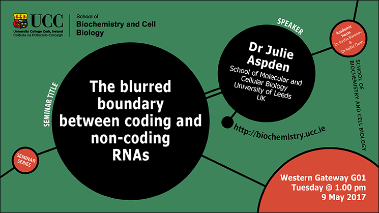 2016-2017 School of Biochemistry and Cell Biology Seminar Series. SEMINAR TITLE: The blurred boundary between coding and non-coding RNAs.SEMINAR SPEAKER: Dr Julie Aspden, School of Molecular and Cellular Biology, University of Leeds, UK.VENUE AND DATE: Western Gateway G01 @ 1.00pm Tuesday 9 May 2017.ACADEMIC HOSTs: Dr Pasha Baranov & Dr Kellie Dean.