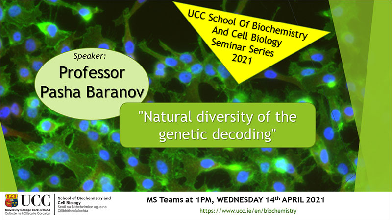 2020-2021 School of Biochemistry and Cell Biology Seminar Series. SEMINAR TITLE: Natural diversity of the genetic decoding. SEMINAR SPEAKER: Professor Pasha Baranov, School of Biochemistry and Cell Biology, UCC. VENUE AND DATE: MS Teams @ 1.00pm Wednesday 14th April 2021. ACADEMIC HOST: School of Biochemistry and Cell Biology