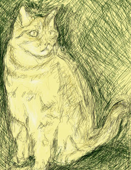 Sketch of a cat by Robert Fourie