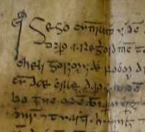 Late Medieval Legal Deeds in Irish