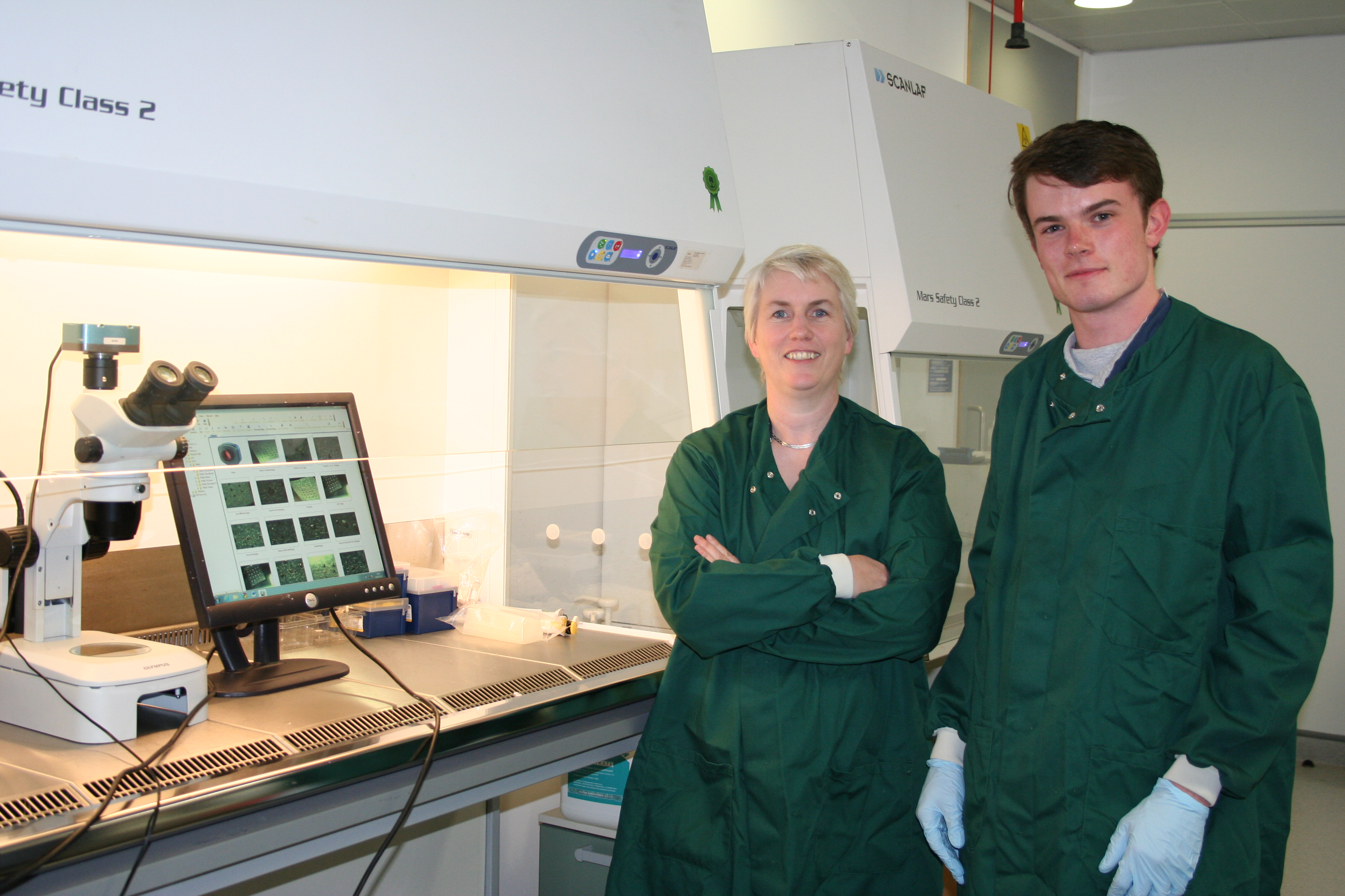 Stephen McInerney has been awarded a Health Research Board Studentship
