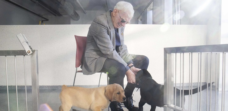 Irish Guide Dogs co-founder to be awarded  Honorary Doctorate from UCC