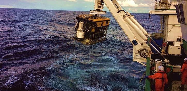 Study finds plastics at bottom of deep submarine canyon