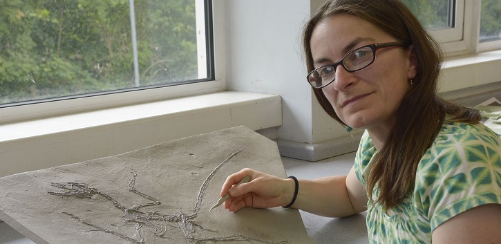 The research was carried out by an international team, which included UCC palaeontologist Dr Maria McNamara (pictured).