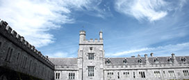 UCC first Irish university to join consortium studying slavery