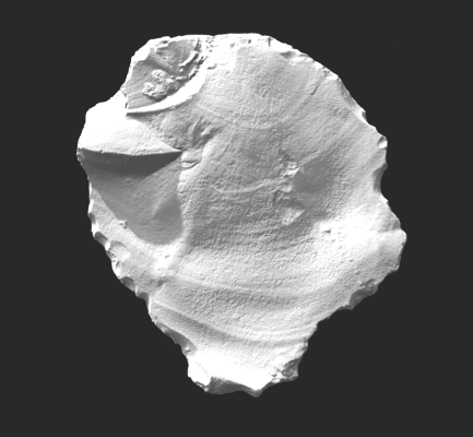 3D laser scan of the flint, with raked lighting to show surface features. (University of Bradford)