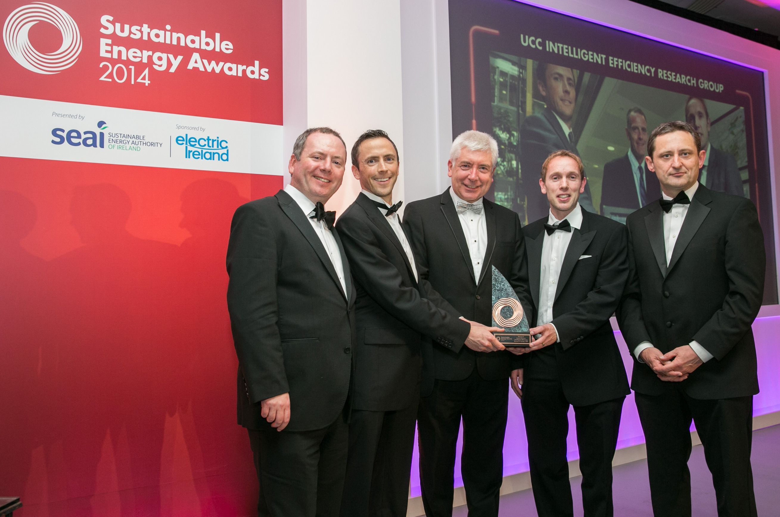 IERG Project Wins SEAI Research Award 2014