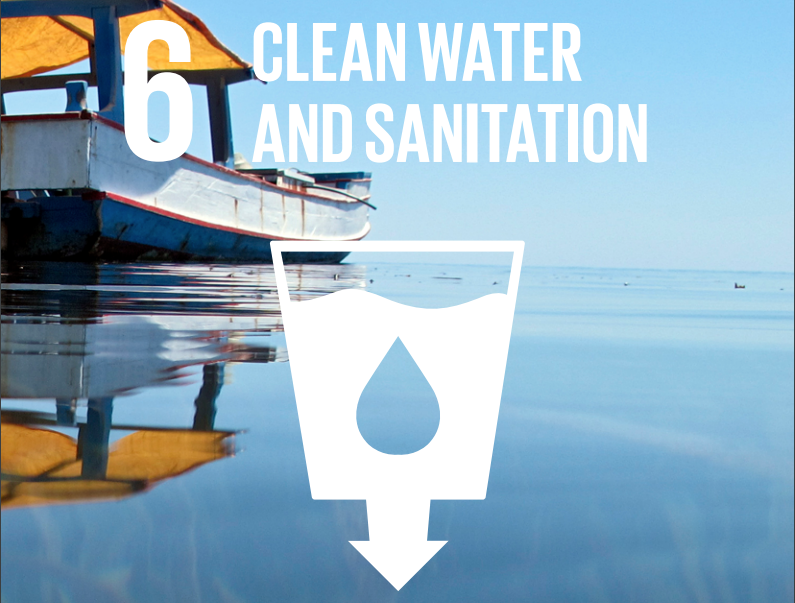 SDG indicator 6.3.2: Progress on Ambient Water Quality