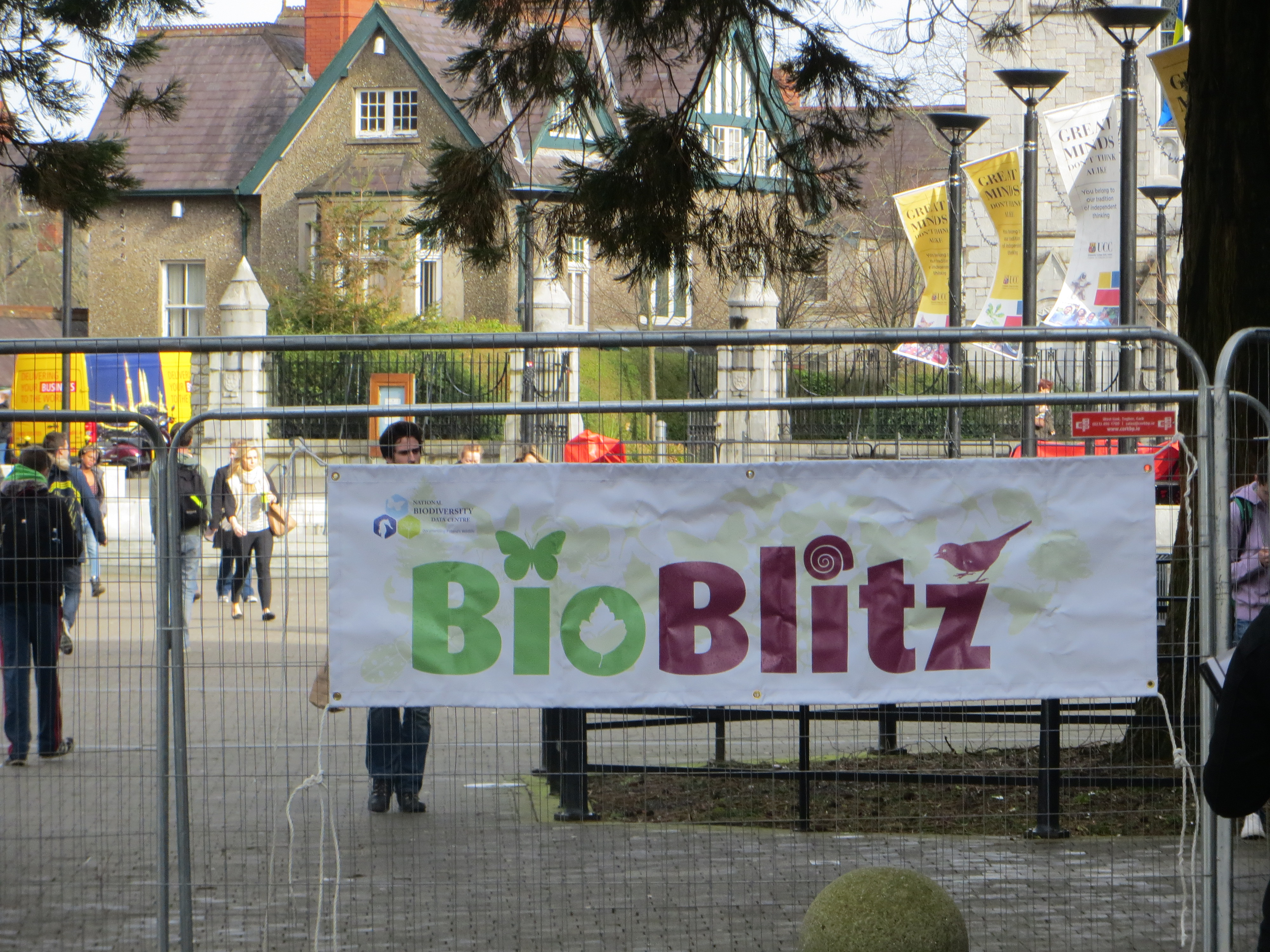 Ireland's 1st Intervarsity Bioblitz 1st-2nd May at UCC