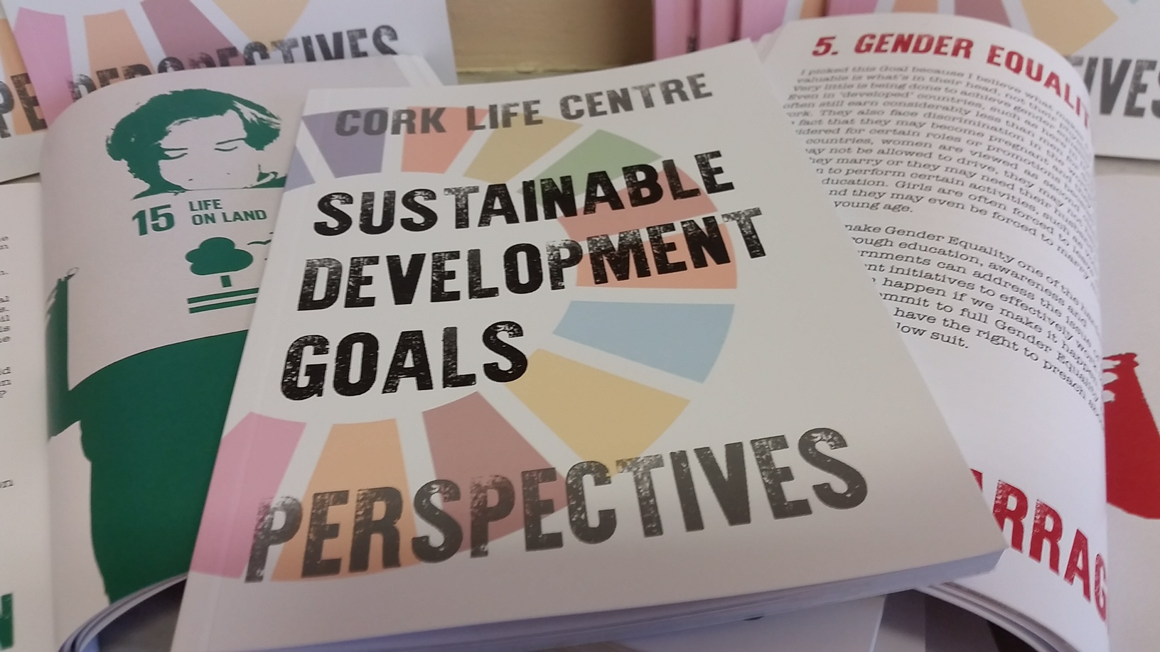 Sustainable Development Goals  Book